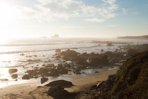 Seal beach-2